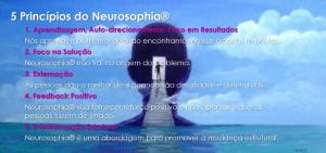 Princípios do Neurosophia