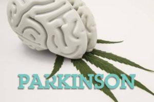 Parkinson, dopamina e o Biomagnetismo